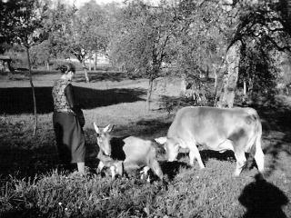 Im Herner Horgen um 1940