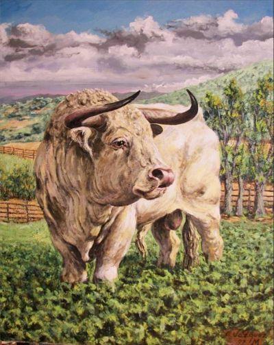 Der weisse Stier
